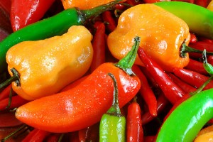 "Have You Got the ""Hots"" for Hot Peppers?"